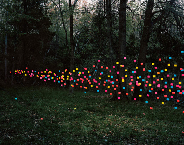 Emergent Behaviors by Thomas Jackson