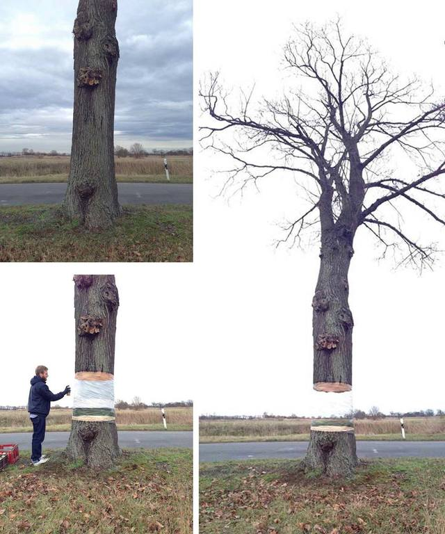 Hovering Tree Illusion