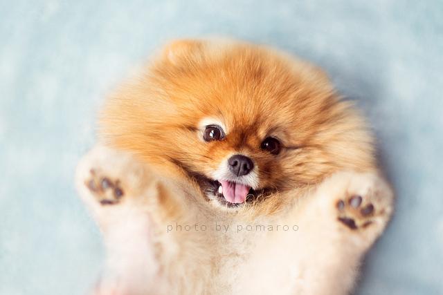 Hugs me!!!