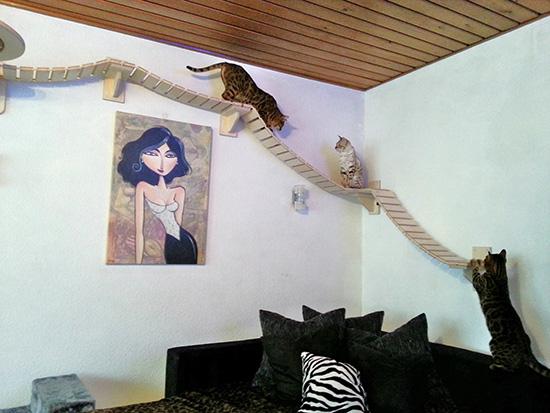 Goldtatze Custom Cat Furniture
