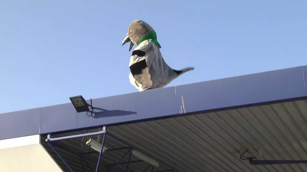 Rémi Gaillard Dresses Up as a Giant Pigeon and Poops on a Man's Vehicle at a Car Wash