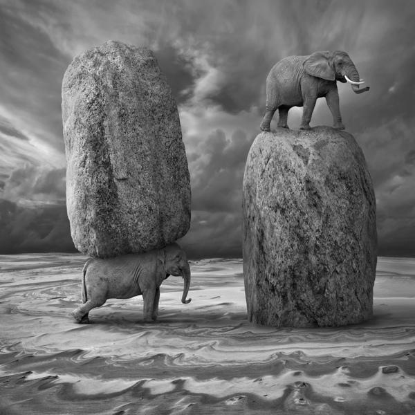 Manips by Dariusz Klimczak