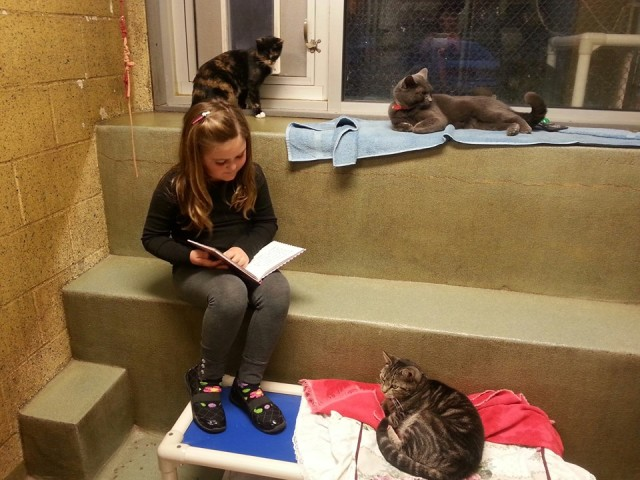 Book Buddies at ARL Berks County