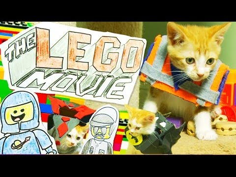 The LEGO Movie Remade with Cute Costumed Kittens