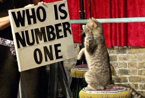 Who Is Number One