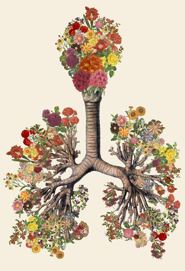 Surreal Anatomical Collage Art Made from Vintage Scientific ...