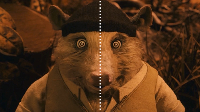 Wes Anderson: Centered