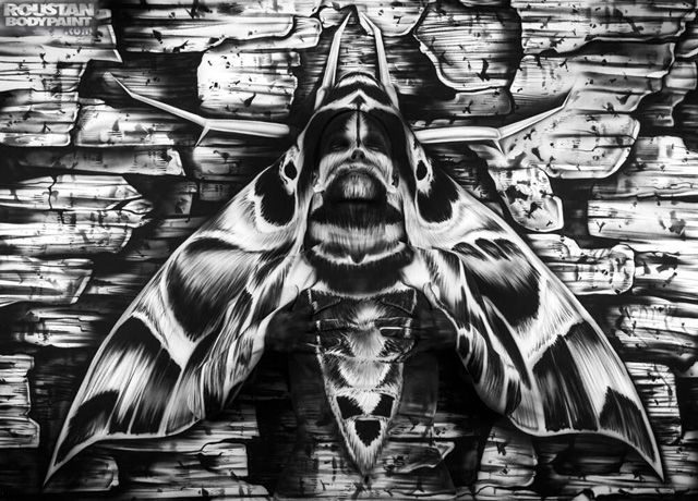 Body Painted Woman Concealed in an Illustration of a Moth