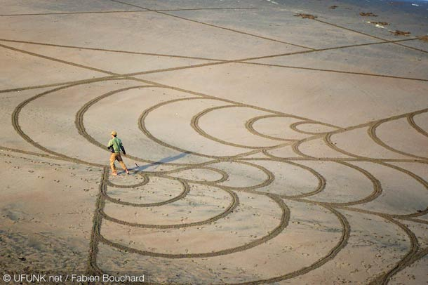 Mussels II Sand Art by Andres Amador