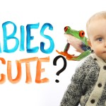 AsapSCIENCE Explains Why We Think Babies Are so Cute