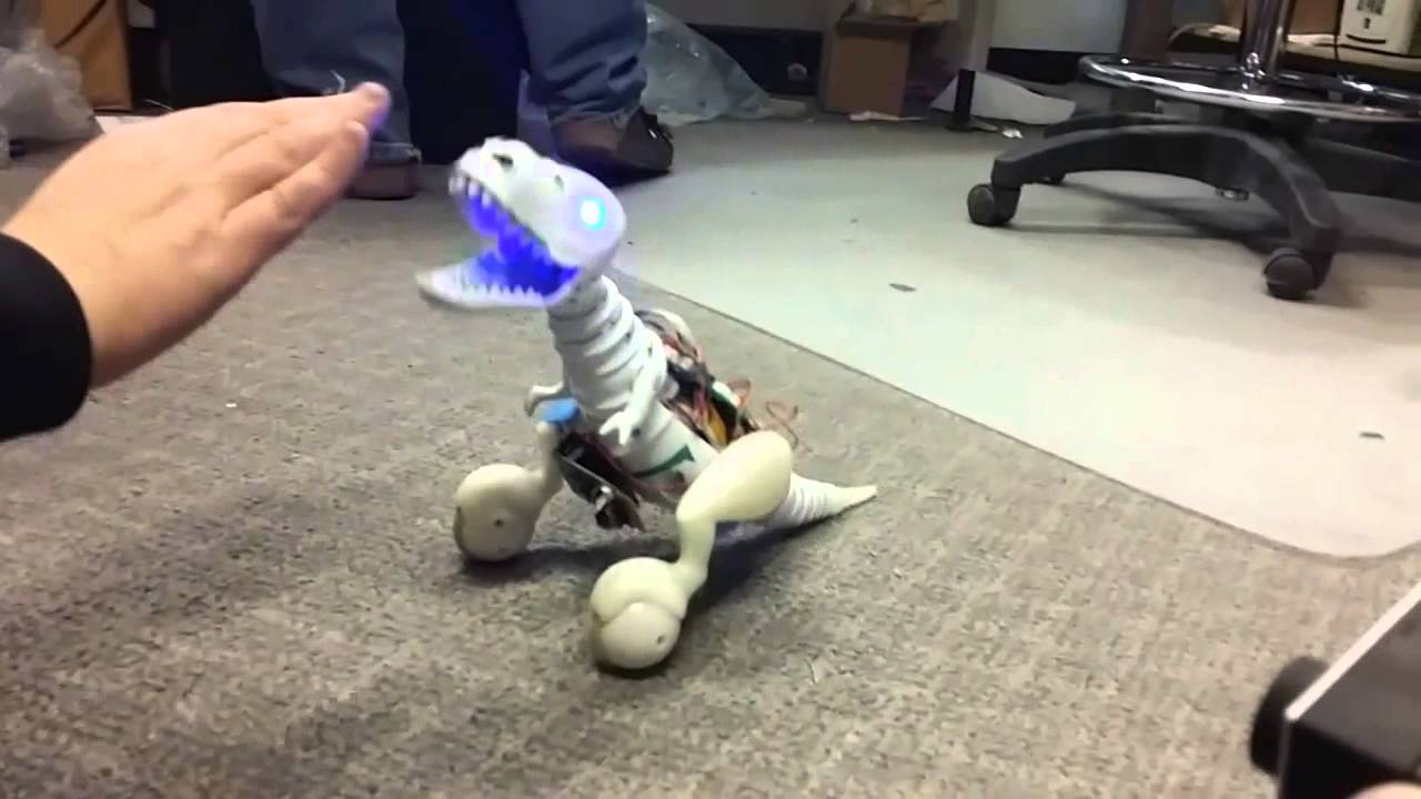 Toy Dog That Follows Commands