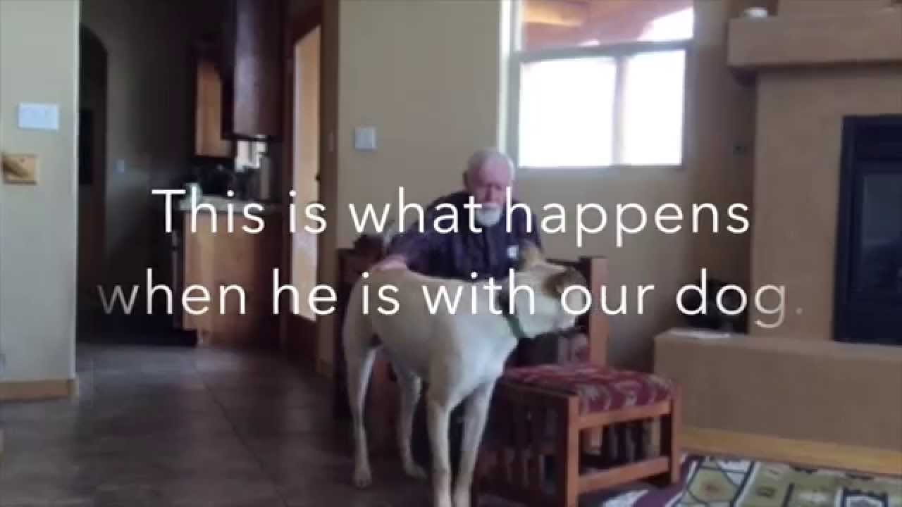 Daughter Posts Video Catching an Incredible Moment Between Non-Verbal Father with Alzheimer's and Loving Dog