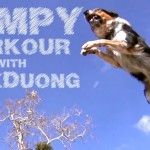 Slow Motion Video of Professional Athlete  Performing Parkour Routine With Jumpy the Dog