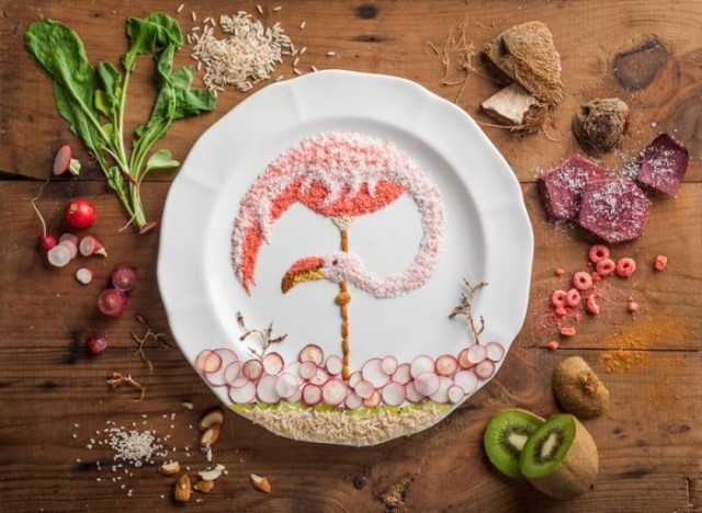 Bird Illustrations Made out of  Food