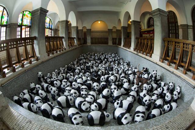 1600-pandas-in-hong-kong-designboom-03
