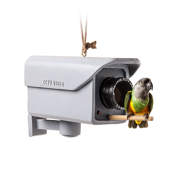 Security Camera Birdfeeder by ThinkGeek