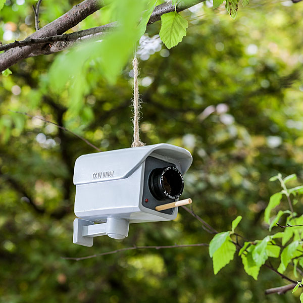 Security Camera Birdfeeder by ThinkGeek