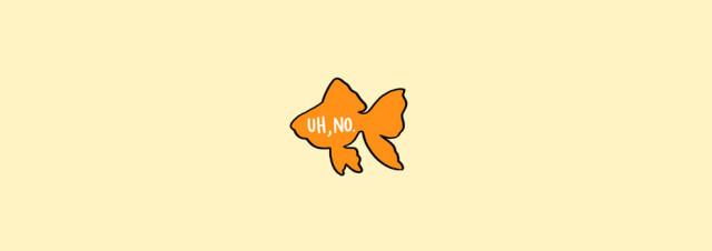 Fish Petting Guide
