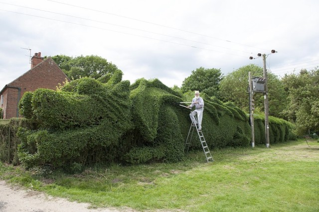 Massive Dragon Hedge Topiary