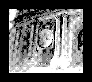 Game Boy Camera New York Public Library