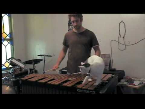 Persistently Lounging Cat Interrupts Musician's Vibraphone Practice Over and Over Again
