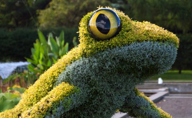 Imaginary Worlds at Atlanta Botanical Garden