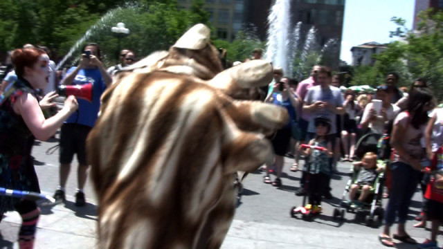 Bigfoot Escapes from Tiny Top Circus Exhibition in New York City