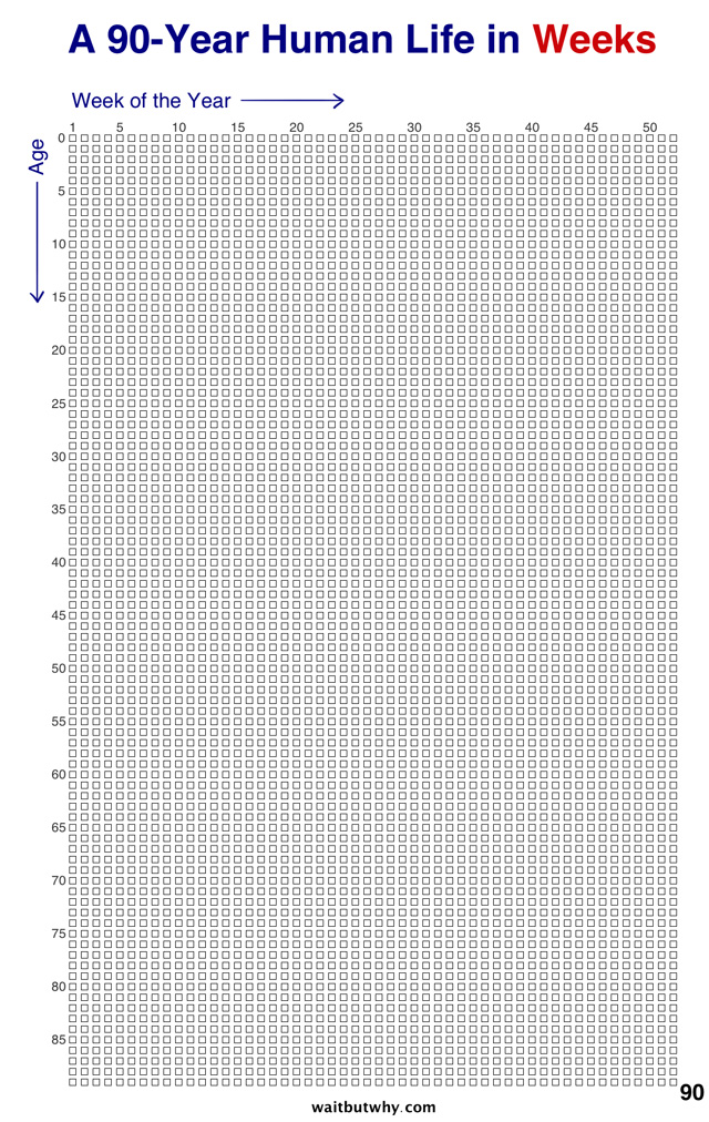 A Chart That Measures Human Life in Weeks