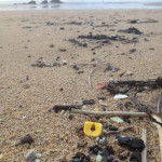 Lost at Sea in a 1997 Container Ship Accident, LEGO Pieces Continue to Wash Ashore in Southwest England