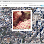 I Know Where Your Cat Lives, A Data Experiment Featuring Public Pictures of Cats on a World Map Based on Metadata