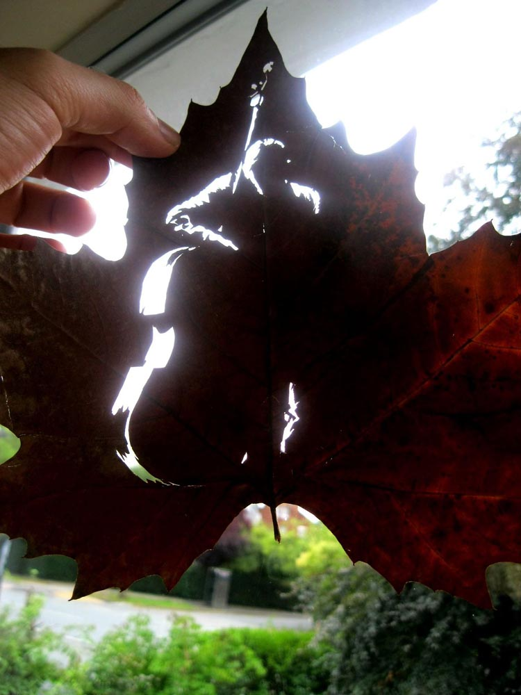 Beautifully Intricate Cut Leaf Art by Omid Asadi