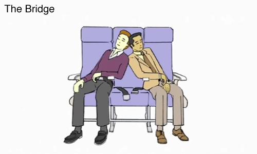 Airplane Sleep Positions by Demetri Martin