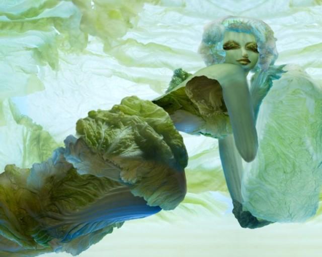 Chinese Cabbage Girls by Ju Duoqi