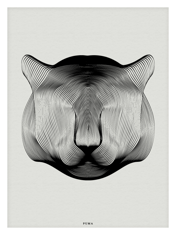 Moire Pattern Animal Illustrations