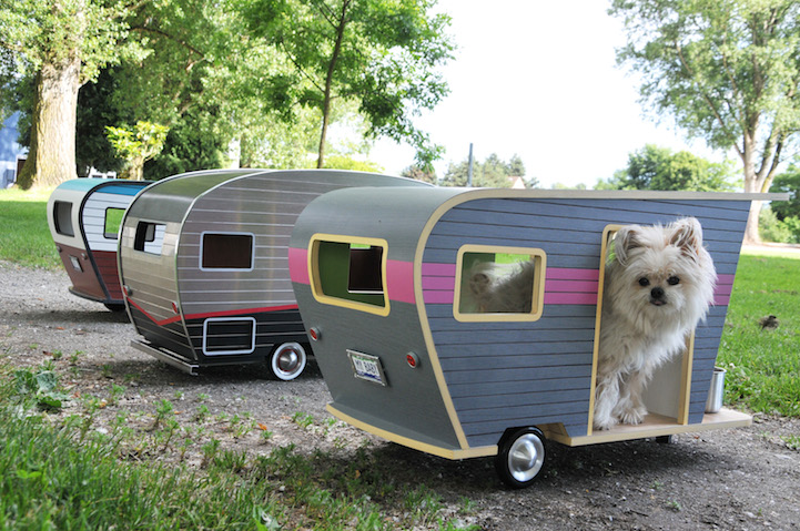 Beautiful Camping With Your Dog Becomes A Luxury Affair At Charlies Bark Park, Where Your Dog Can Leave The RV To Explore And Play With You! One Of The Greatest Perks Of Traveling By RV Is The Ability To Bring All Of The Comforts Of Home With You On