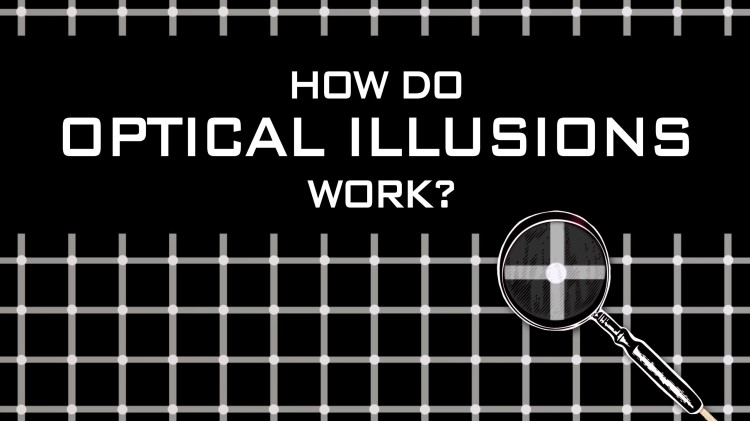 A TED-Ed Animation Explaining How Optical Illusions Fool Our Brains