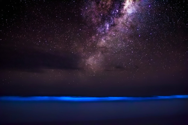 Milky Way Galaxy and Ocean