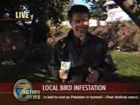 Bob Odenkirk's Fake Video of Bird Pooping in Reporter's Mouth