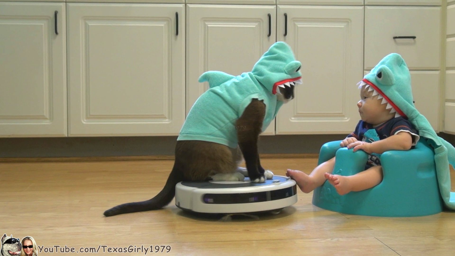 Shop Chewy for low prices on dog and cat Halloween Costumes. Choose between classic costumes, TV and movie costumes, food costumes, superhero costumes and more that all range in size from extra small toy breeds up to extra large breeds. *FREE* shipping on .
