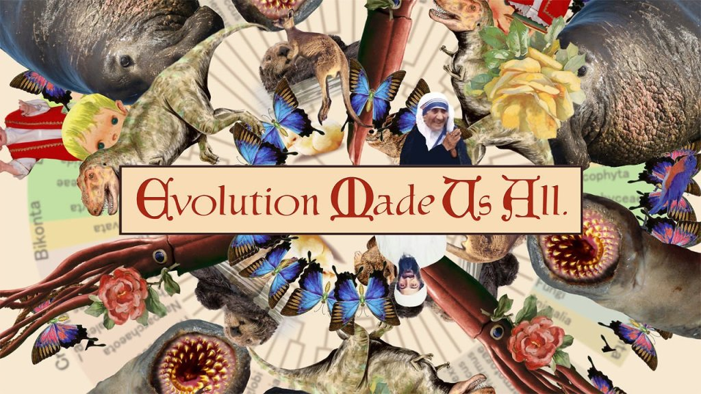 Evolution Made Us All, A Sunday School Hymn Parody
