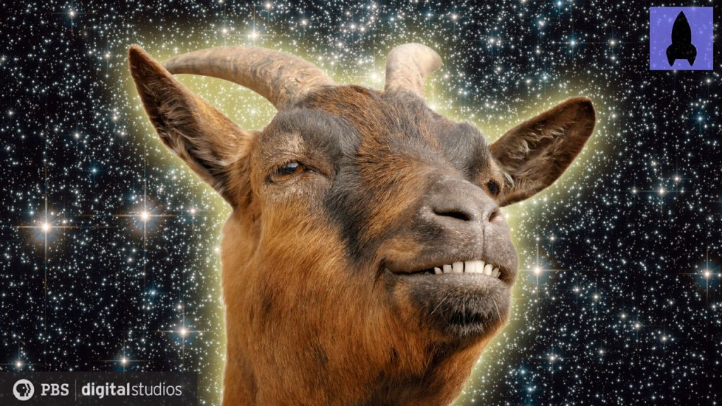 """It's Okay To Be Smart Explains the Complex Science Behind Goats in Their New Episode """"GOATS!"""""""