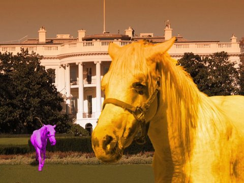 My Little Pony, The Live Action-Film