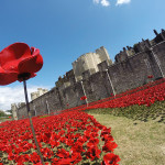 An Eerie Installation of 888,246 Ceramic Poppies at the Tower of London That Marks Britain's World War I Military Dead