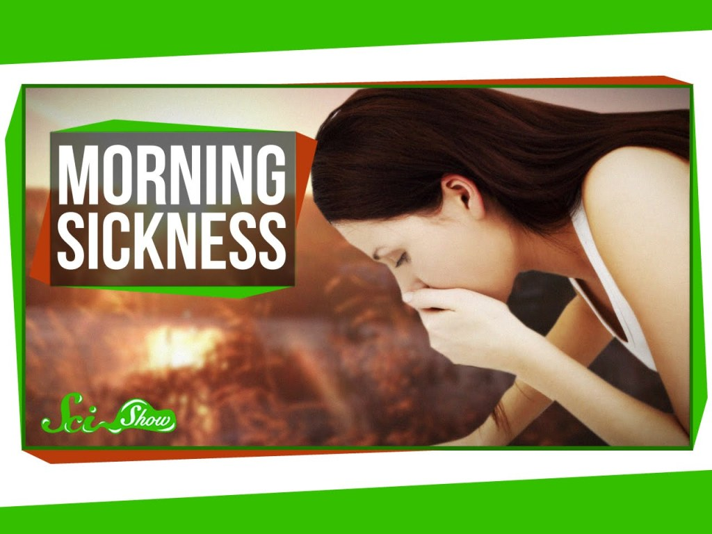 SciShow Explains the Possible Causes of Morning Sickness