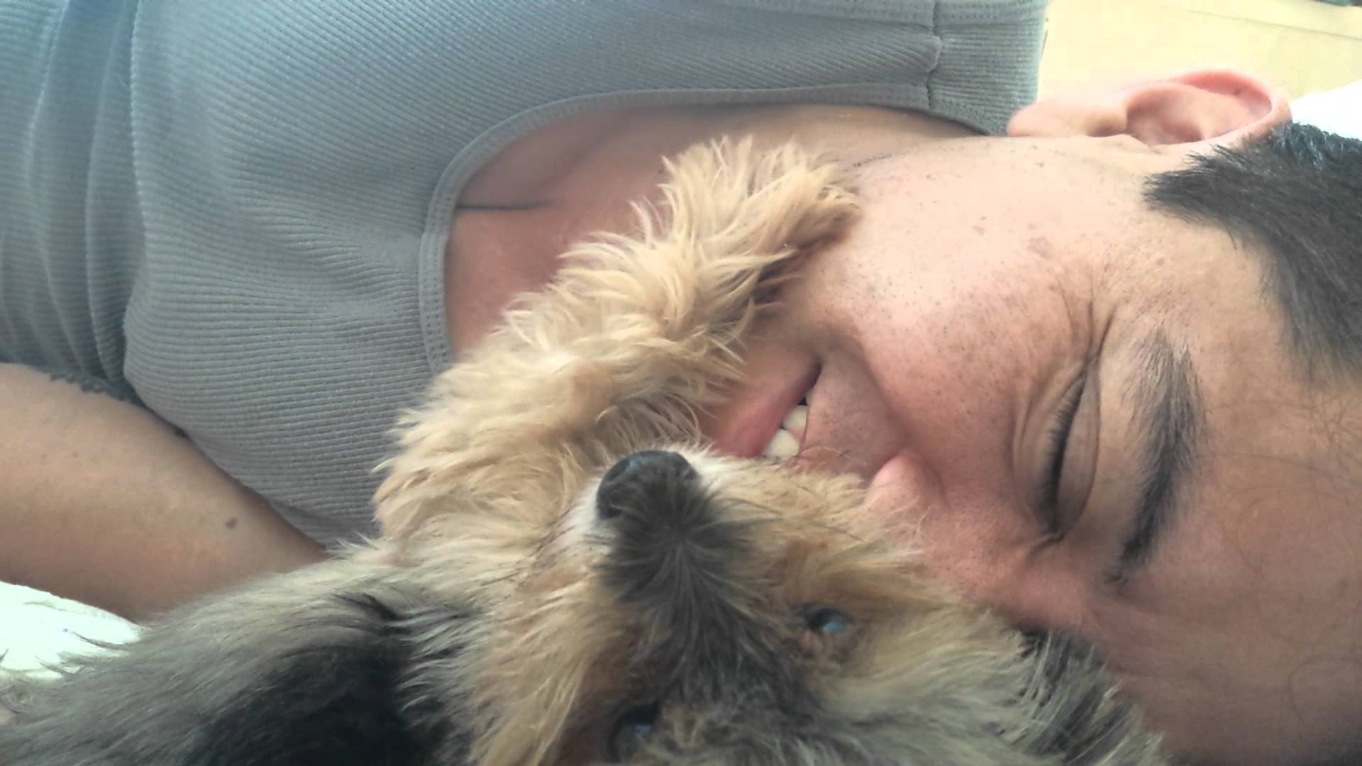 Tiny Yorkshire Terrier Lovingly Pets His Human's Face While He's Sleeping