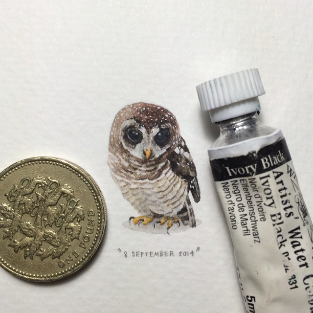 365 Postcards for Ants by Lorraine Loots