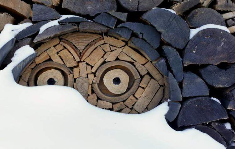 Montana Man Creates Beautiful Wood Mosaics Out of Stacked Firewood
