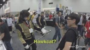 Hawkcat