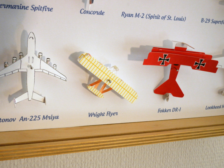 A Specimen Display Box Containing Small Paper Aircraft Models - Box paper airplane