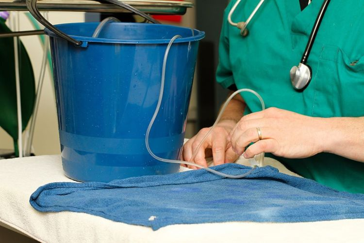 goldfish surgery 4
